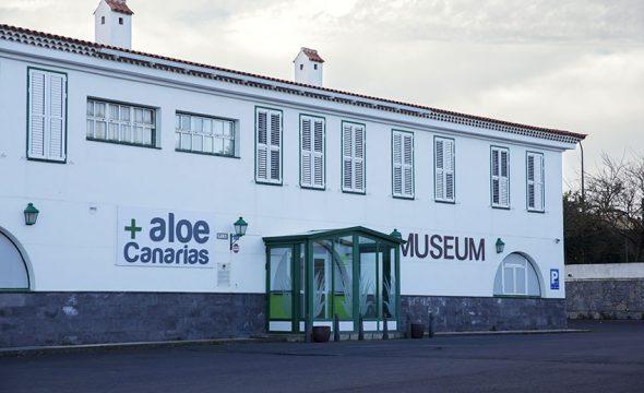 Musée Aloe Vera - Aloe Plus Lanzarote à Tenerife