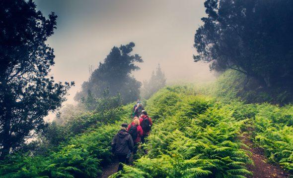 Groupe de randonneurs dans le Parc rural d'Anaga à Tenerife