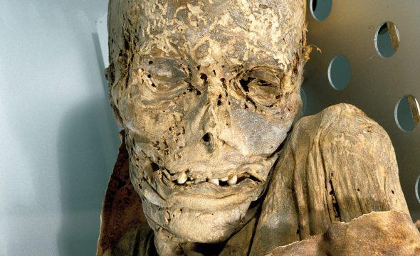 Momie du Musée naturel et archéologique à Tenerife